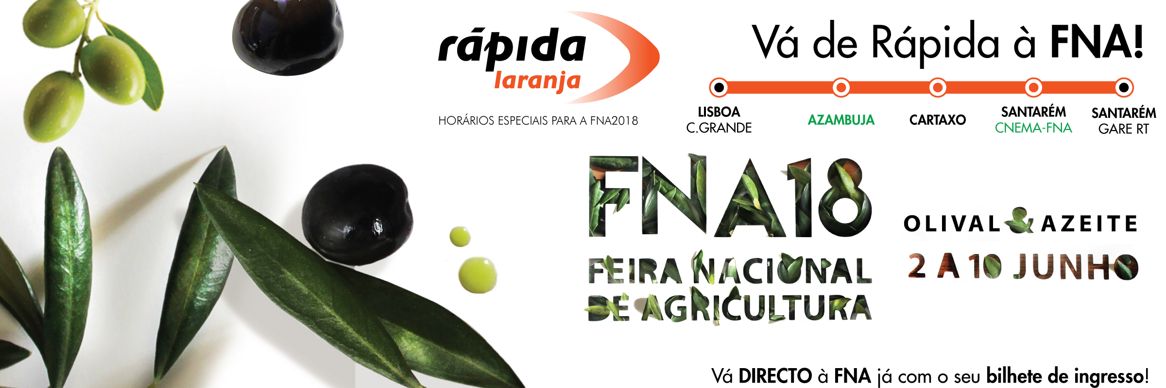 BANNER-RAPIDA-LARANJA-FNA2018