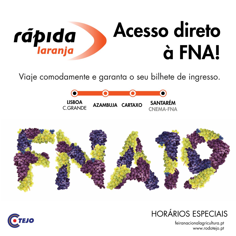 noticia-web-FNA2019_rapida-laranja_2